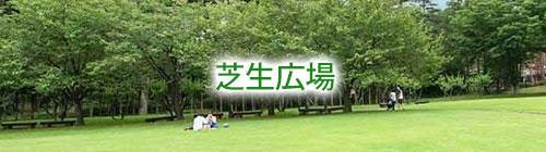 芝生広場.jpg