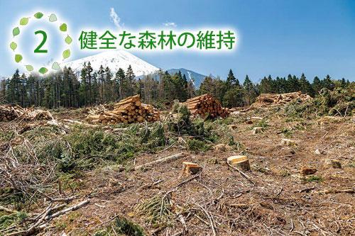 健全な森林の維持.jpg