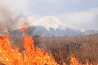 「北富士演習場内国有入会地等の火入れ(野焼き)について(お願い)」サムネイル画像